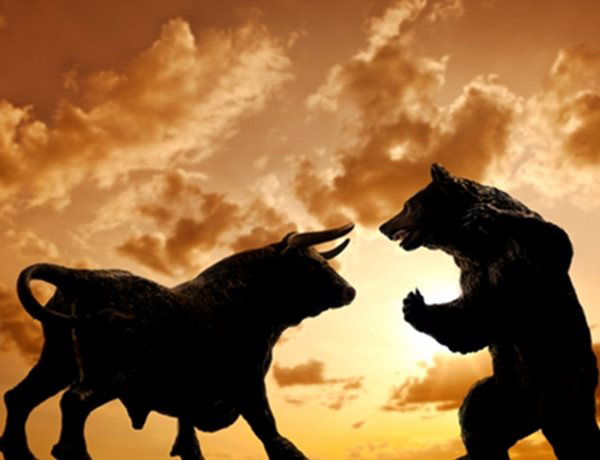 bear_vs_bull2