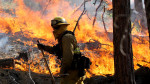 California on Fire While Son of Perdition Plays Golf Nearby