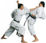 Karate Fighters Reveal Future Forex Price Movements