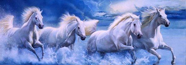 four_white_horses