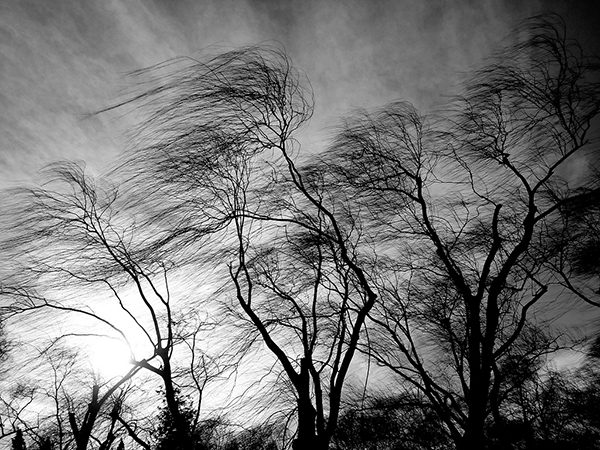 strong_wind