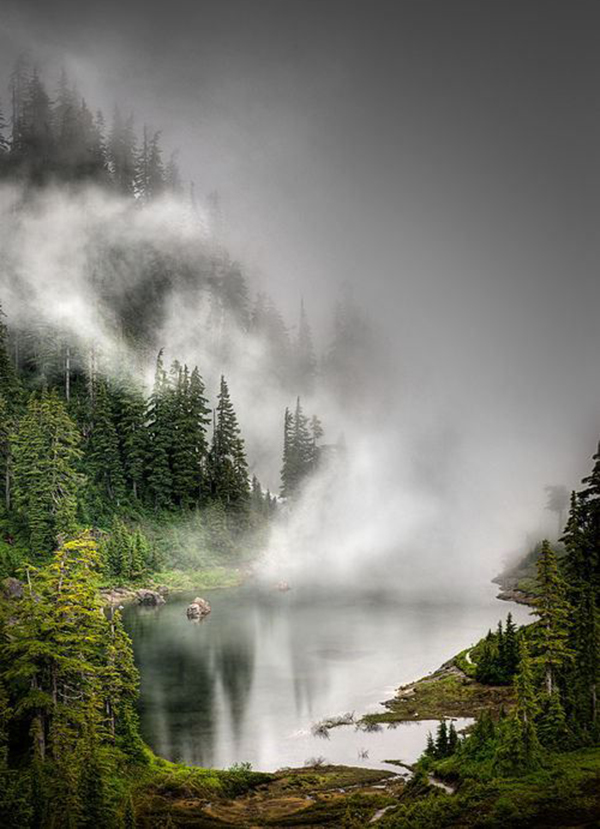 foggy_lake
